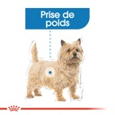 ROYAL CANIN CCN Light Weight Care 85G X 12